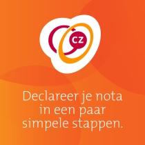 CZ declaratie app